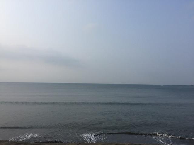 茅ヶ崎ファロス波情報 2019.06.20